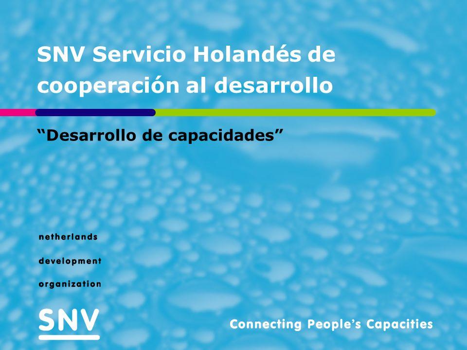 SNV Servicio Holandés de cooperación al desarrollo Desarrollo de capacidades