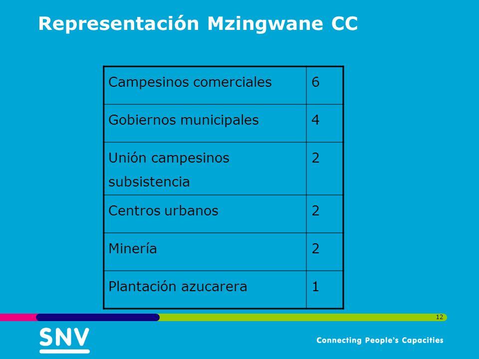 12 Representación Mzingwane CC Campesinos comerciales6 Gobiernos municipales4 Unión campesinos subsistencia 2 Centros urbanos2 Minería2 Plantación azucarera1