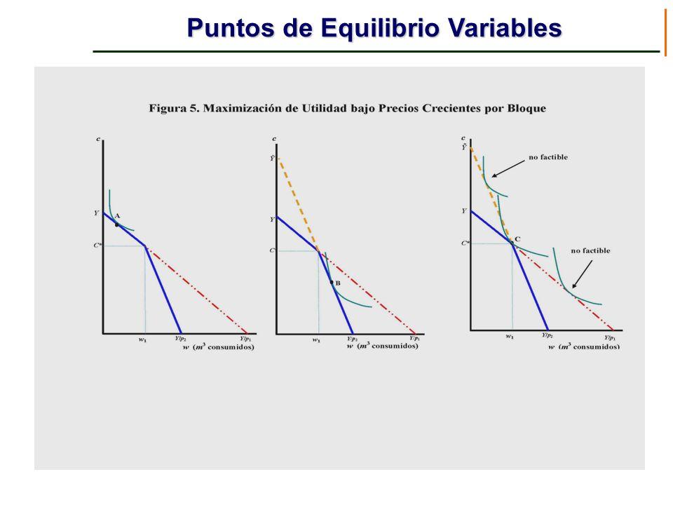 Puntos de Equilibrio Variables
