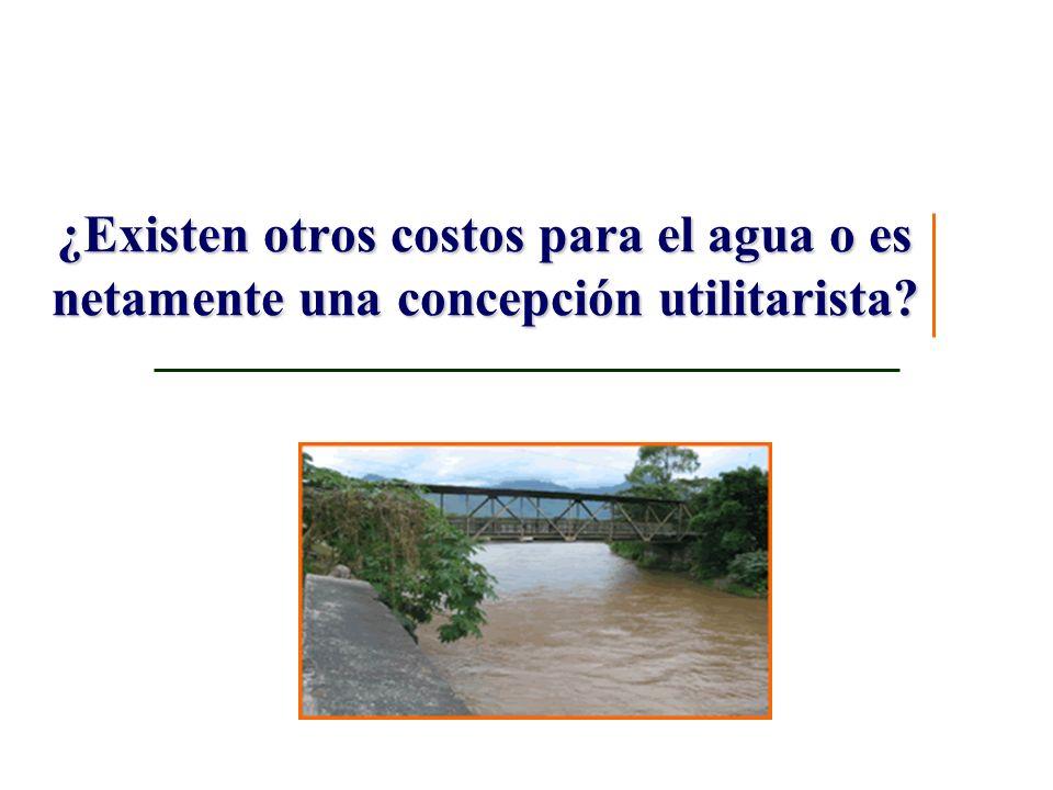 ¿Existen otros costos para el agua o es netamente una concepción utilitarista?