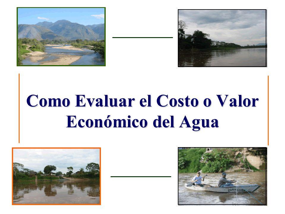 Como Evaluar el Costo o Valor Económico del Agua