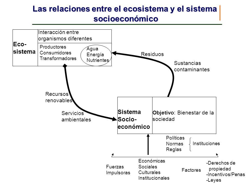 Eco- sistema Interacción entre organismos diferentes Productores Consumidores Transformadores Agua Energía Nutrientes Sistema Socio- económico Objetiv