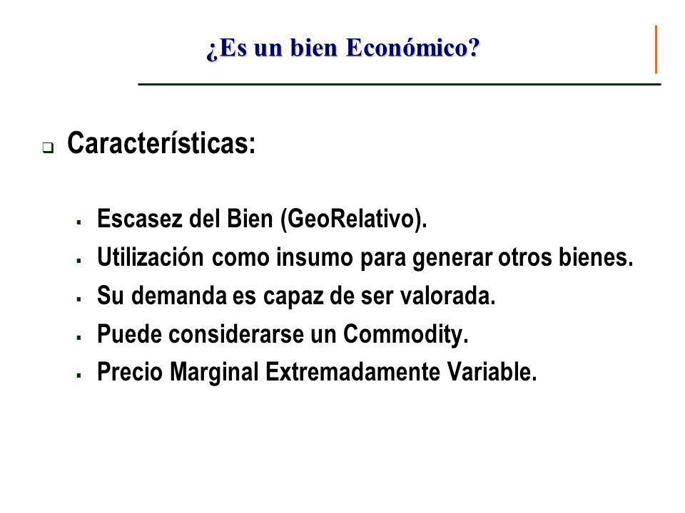¿Es un bien Económico? Características: Escasez del Bien (GeoRelativo). Utilización como insumo para generar otros bienes. Su demanda es capaz de ser
