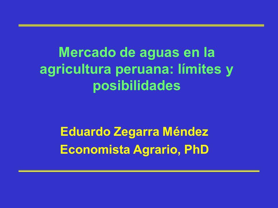Contexto peruano Actualmente hay consenso sobre la necesidad de cambiar la legislación de aguas de 1969 basada en derechos administrativos (acceso ligado a PCR) y por el sesgo agrario.