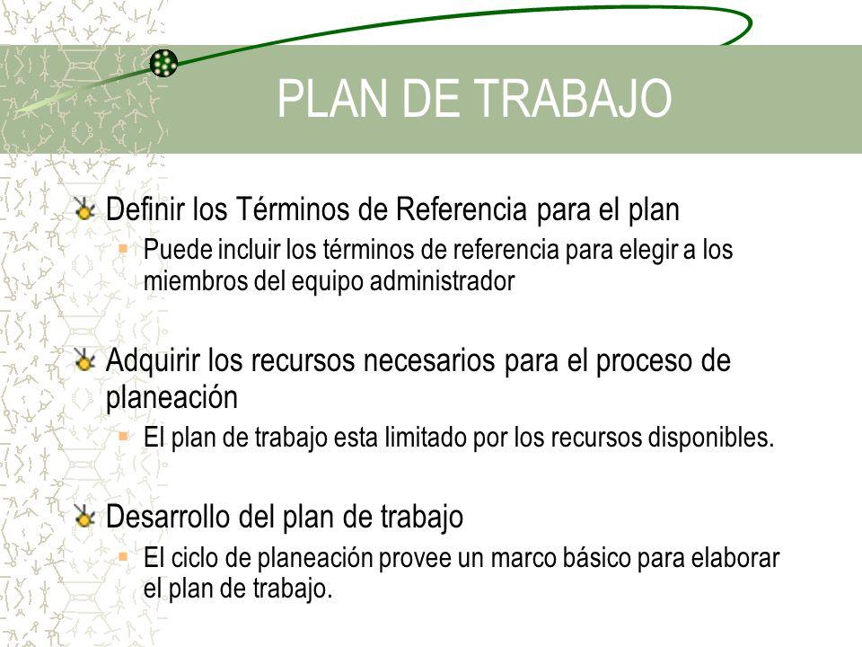 Definir los Términos de Referencia para el plan Puede incluir los términos de referencia para elegir a los miembros del equipo administrador Adquirir