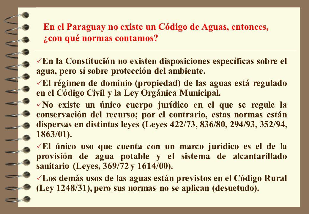 En la Constitución no existen disposiciones específicas sobre el agua, pero sí sobre protección del ambiente. El régimen de dominio (propiedad) de las