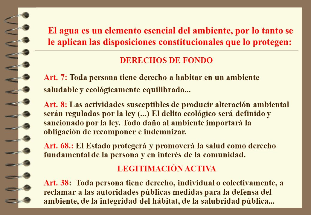 DERECHOS DE FONDO Art. 7: Toda persona tiene derecho a habitar en un ambiente saludable y ecológicamente equilibrado... Art. 8: Las actividades suscep