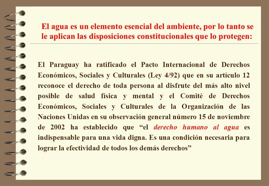 El Paraguay ha ratificado el Pacto Internacional de Derechos Económicos, Sociales y Culturales (Ley 4/92) que en su artículo 12 reconoce el derecho de