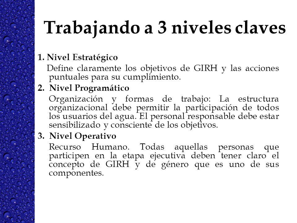 Trabajando a 3 niveles claves 1. Nivel Estratégico Define claramente los objetivos de GIRH y las acciones puntuales para su cumplimiento. 2. Nivel Pro