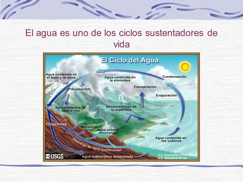 El agua es uno de los ciclos sustentadores de vida