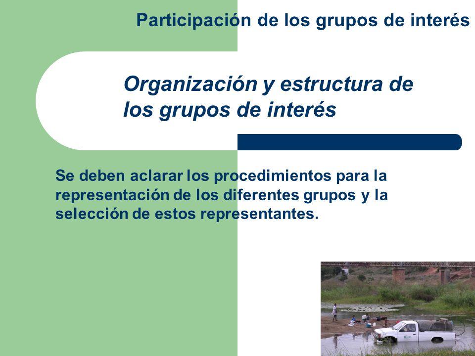 Se deben aclarar los procedimientos para la representación de los diferentes grupos y la selección de estos representantes. Organización y estructura
