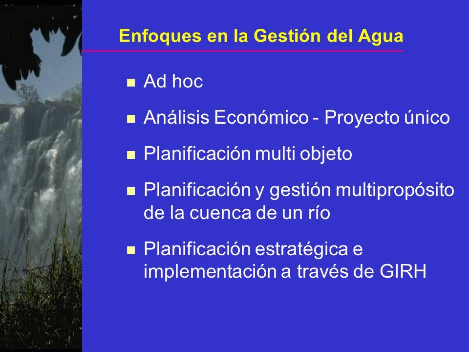 n Ad hoc n Análisis Económico - Proyecto único n Planificación multi objeto n Planificación y gestión multipropósito de la cuenca de un río n Planific