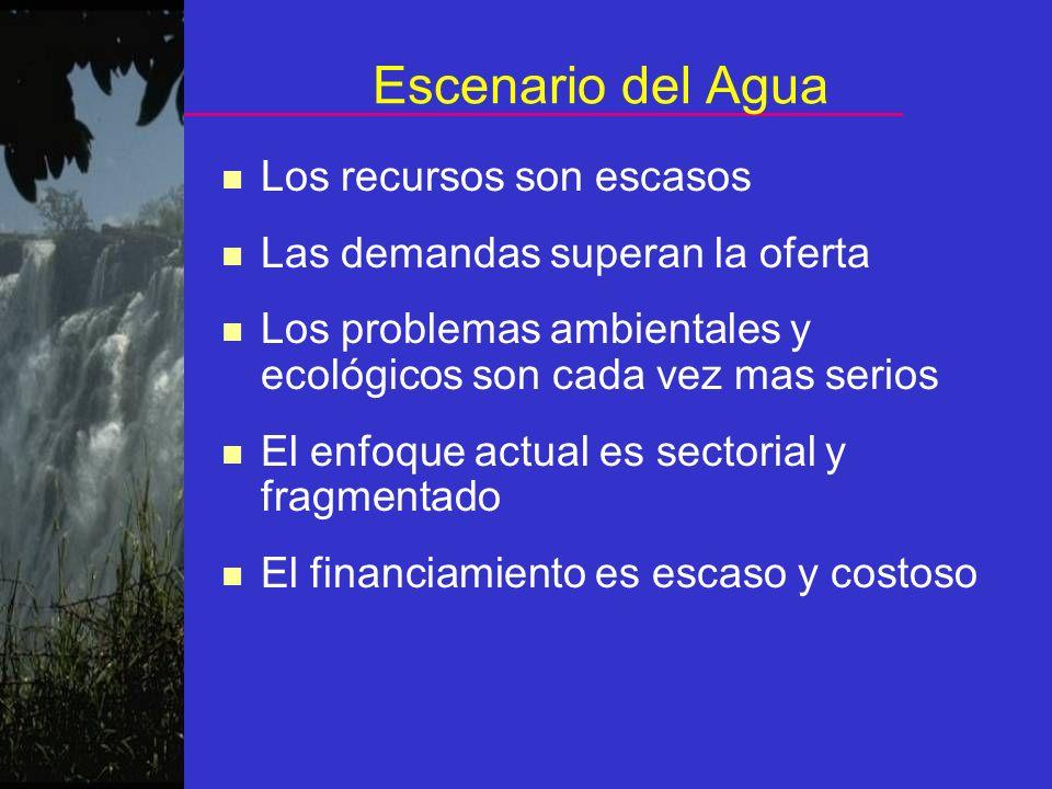 Escenario del Agua n Los recursos son escasos n Las demandas superan la oferta n Los problemas ambientales y ecológicos son cada vez mas serios n El e