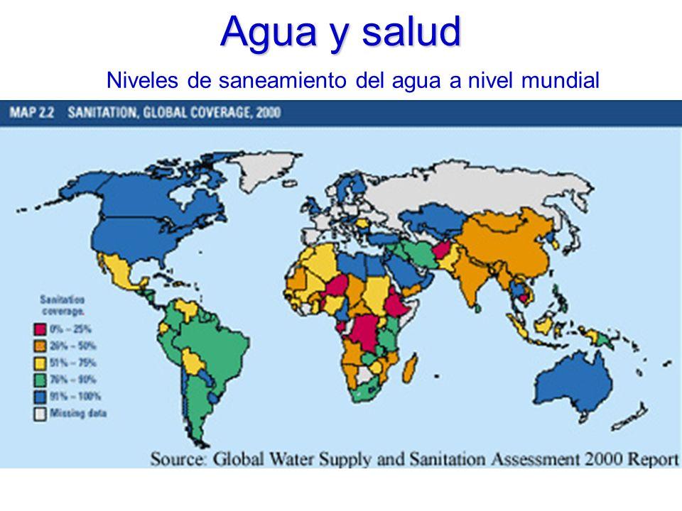 Niveles de saneamiento del agua a nivel mundial Agua y salud
