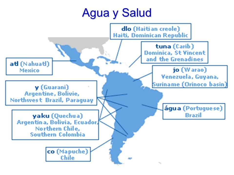 Agua y Salud LA CONTAMINACIÓN DEL AGUA Los ríos, lagos y mares recogen, desde tiempos inmemoriales, las basuras producidas por la actividad humana.