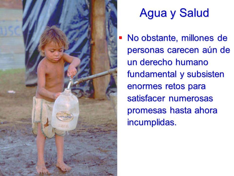 No obstante, millones de personas carecen aún de un derecho humano fundamental y subsisten enormes retos para satisfacer numerosas promesas hasta ahor