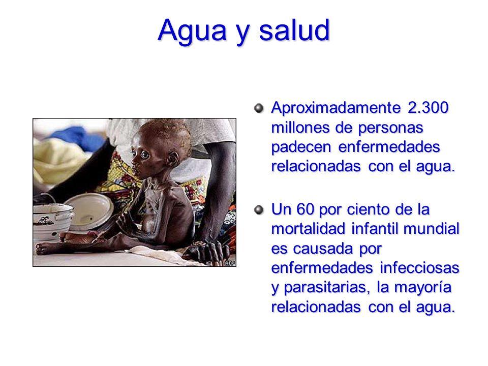 Agua y salud Aproximadamente 2.300 millones de personas padecen enfermedades relacionadas con el agua. Un 60 por ciento de la mortalidad infantil mund