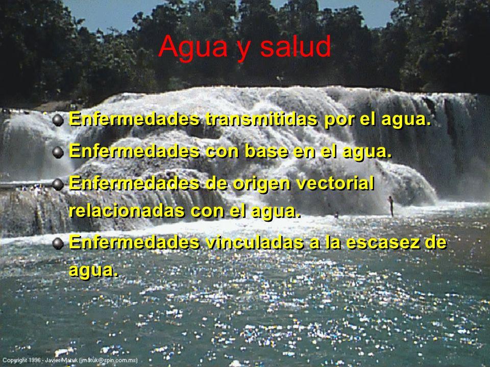 Agua y salud Enfermedades transmitidas por el agua. Enfermedades con base en el agua. Enfermedades de origen vectorial relacionadas con el agua. Enfer