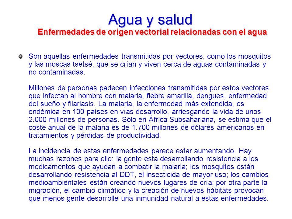 Agua y salud Enfermedades de origen vectorial relacionadas con el agua Son aquellas enfermedades transmitidas por vectores, como los mosquitos y las m