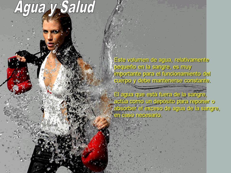 El agua entra en el cuerpo principalmente por la absorción desde el aparato digestivo y lo abandona como orina que excretan los riñones.