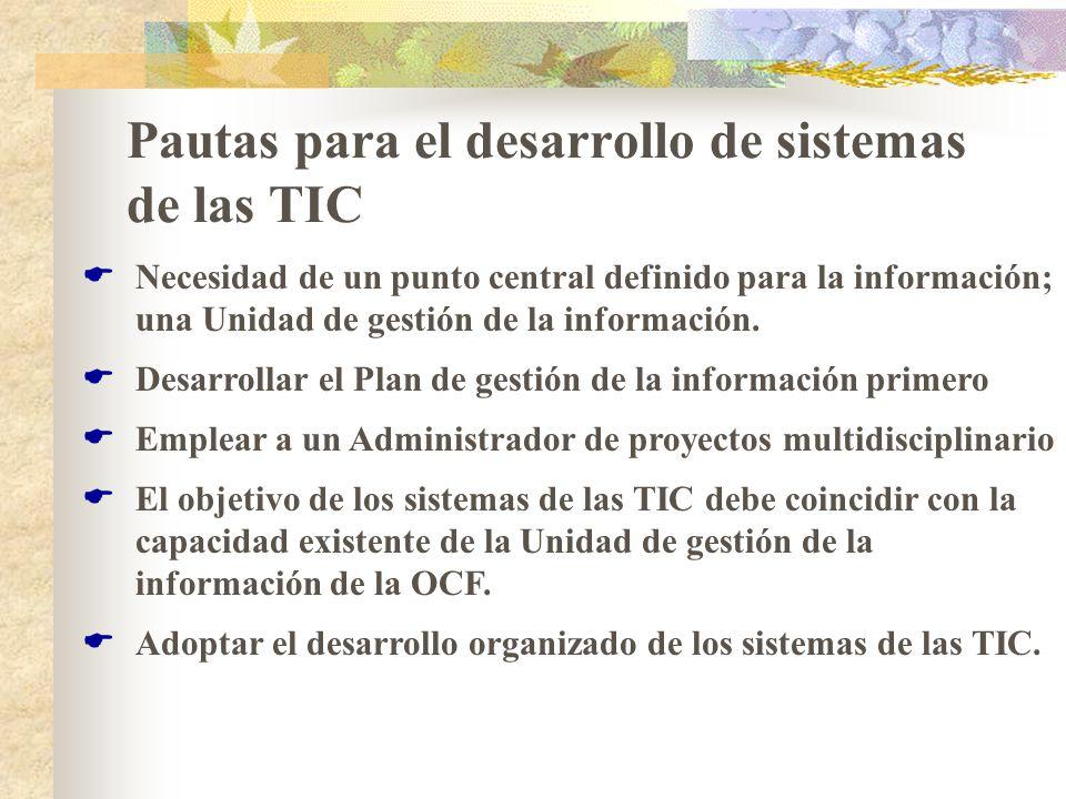 Pautas para el desarrollo de sistemas de las TIC Necesidad de un punto central definido para la información; una Unidad de gestión de la información.