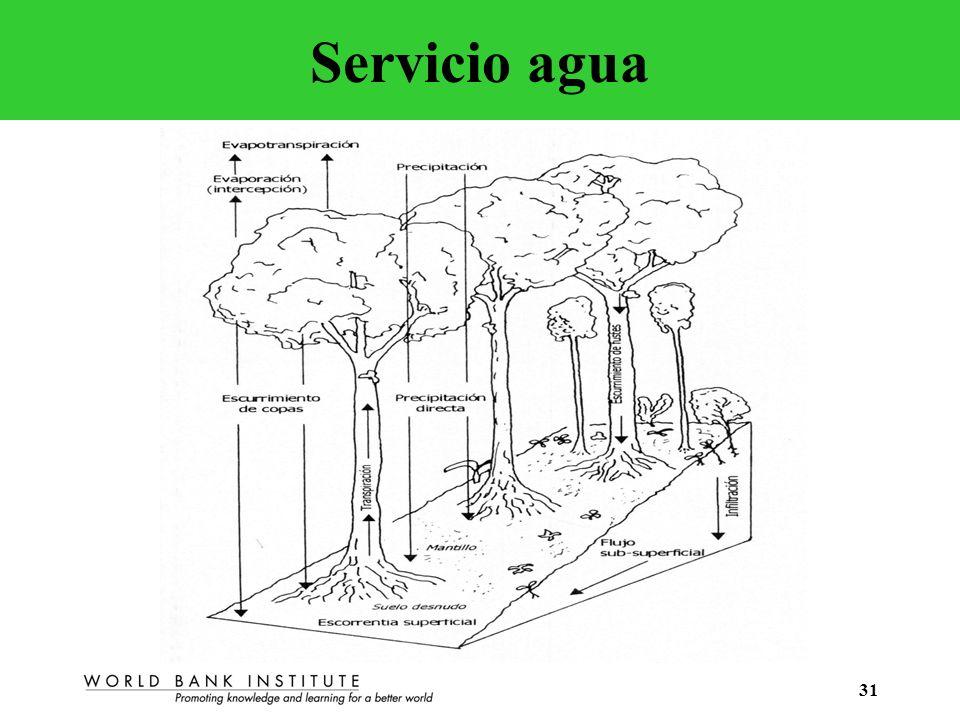 31 Servicio agua