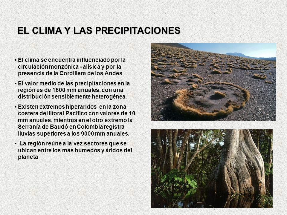 EL CLIMA Y LAS PRECIPITACIONES El clima se encuentra influenciado por la circulación monzónica - alísica y por la presencia de la Cordillera de los An