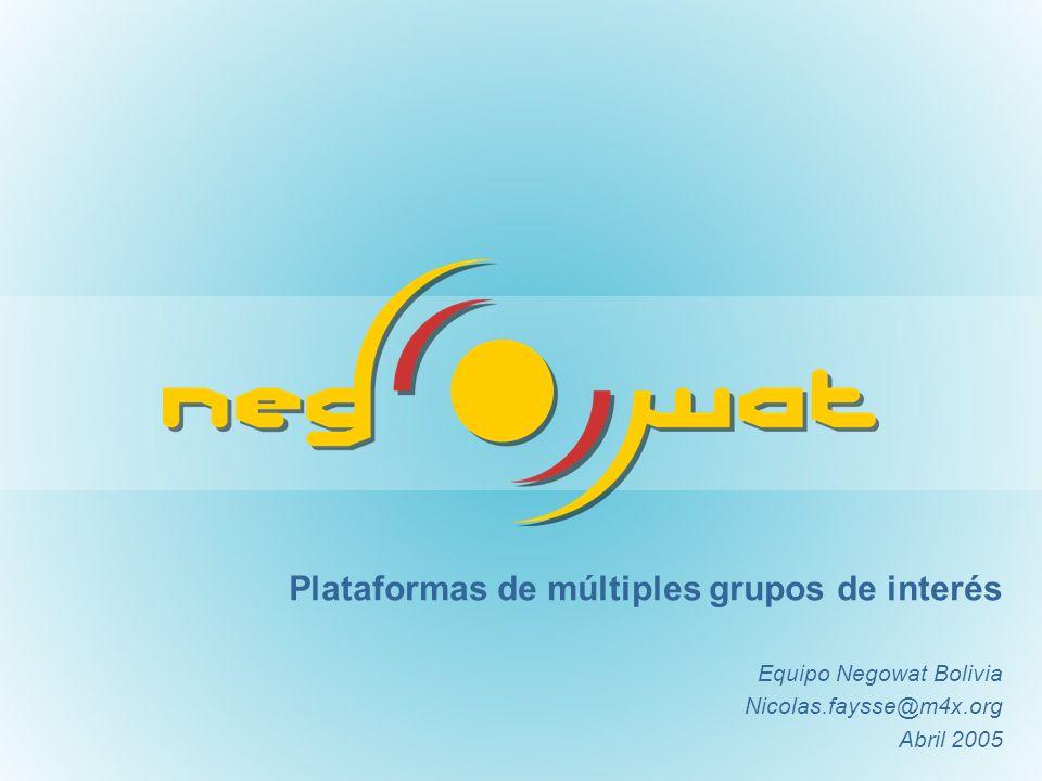 Plataformas de múltiples grupos de interés Equipo Negowat Bolivia Nicolas.faysse@m4x.org Abril 2005