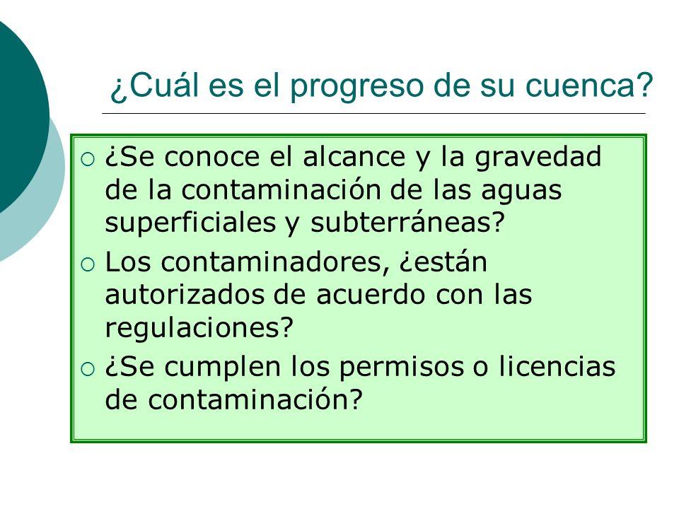 ¿Cuál es el progreso de su cuenca? ¿Se conoce el alcance y la gravedad de la contaminación de las aguas superficiales y subterráneas? Los contaminador