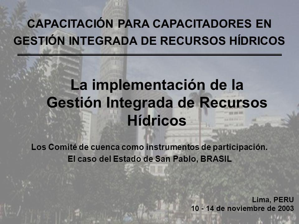 Lima, PERU 10 - 14 de noviembre de 2003 CAPACITACIÓN PARA CAPACITADORES EN GESTIÓN INTEGRADA DE RECURSOS HÍDRICOS Los Comité de cuenca como instrumentos de participación.
