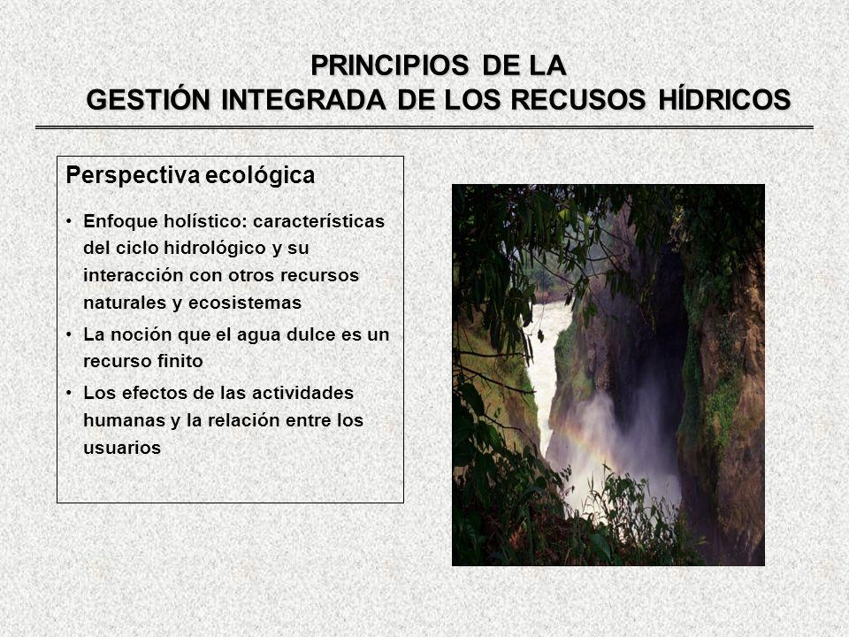 GESTIÓN INTEGRADA DE LOS RECURSOS HÍDRICOS ACTORES DEL PROCESO DE GESTION ESTRUCTURA DE MANEJO DE CUENCAS Unidad lógica para el planeamiento y gestión de los recursos hídricos Unidades administrativas como la nación, provincias, municipios regiones, no presentan necesariamente el carácter integrador de la cuenca ELEMENTOS PARA EL ÉXITO DE UNA ORGANIZACIÓN DE CUENCA (Experiencia francesa) Conciencia o idea fuerza movilizadora del conjunto Un foro para todos los interesados (parlamento del agua) Un presupuesto que sustente la organización y que financie las operaciones e inversiones necesarias