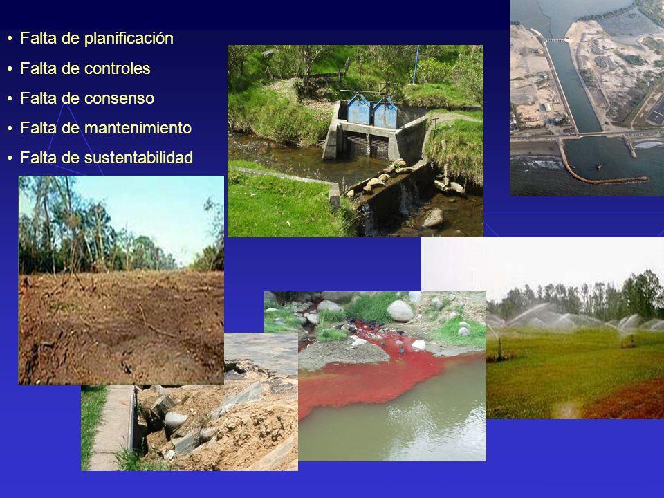 Falta de planificación Falta de controles Falta de consenso Falta de mantenimiento Falta de sustentabilidad