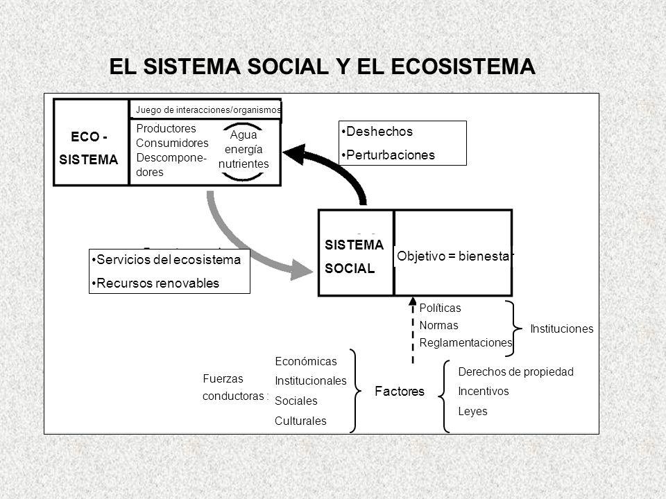 S10_HYDRO_CYCLE_Keith kennedy_CHYN Neuchatel_25 June 2003 17 EL SISTEMA SOCIAL Y EL ECOSISTEMA ECO - SISTEMA Productores Consumidores Descompone- dore