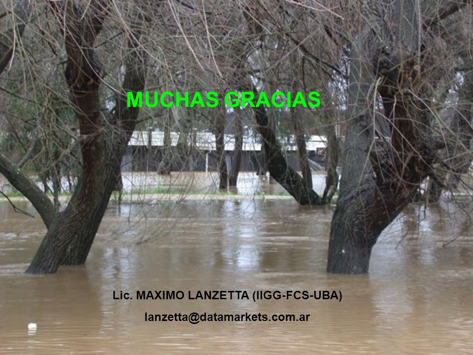 MUCHAS GRACIAS Lic. MAXIMO LANZETTA (IIGG-FCS-UBA) lanzetta@datamarkets.com.ar