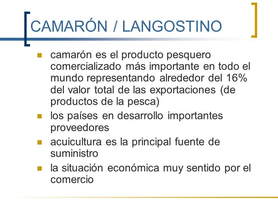 CAMARÓN / LANGOSTINO camarón es el producto pesquero comercializado más importante en todo el mundo representando alrededor del 16% del valor total de