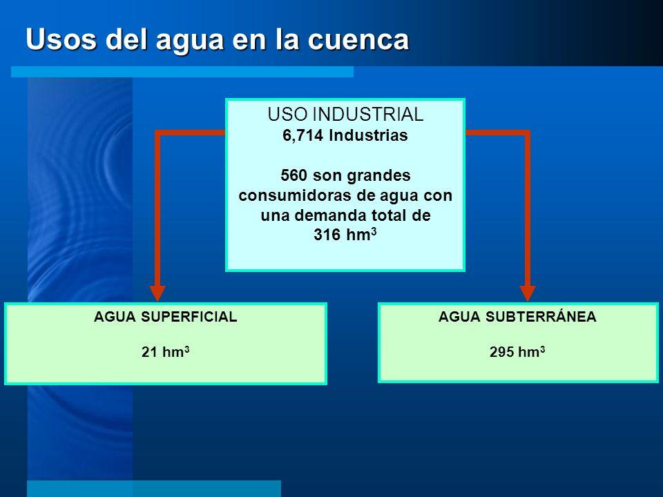 AGUA SUPERFICIAL 21 hm 3 AGUA SUBTERRÁNEA 295 hm 3 USO INDUSTRIAL 6,714 Industrias 560 son grandes consumidoras de agua con una demanda total de 316 h
