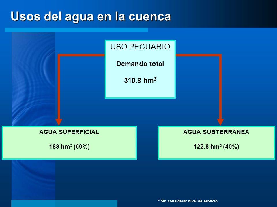 AGUA SUPERFICIAL 188 hm 3 (60%) AGUA SUBTERRÁNEA 122.8 hm 3 (40%) USO PECUARIO Demanda total 310.8 hm 3 * Sin considerar nivel de servicio Usos del ag