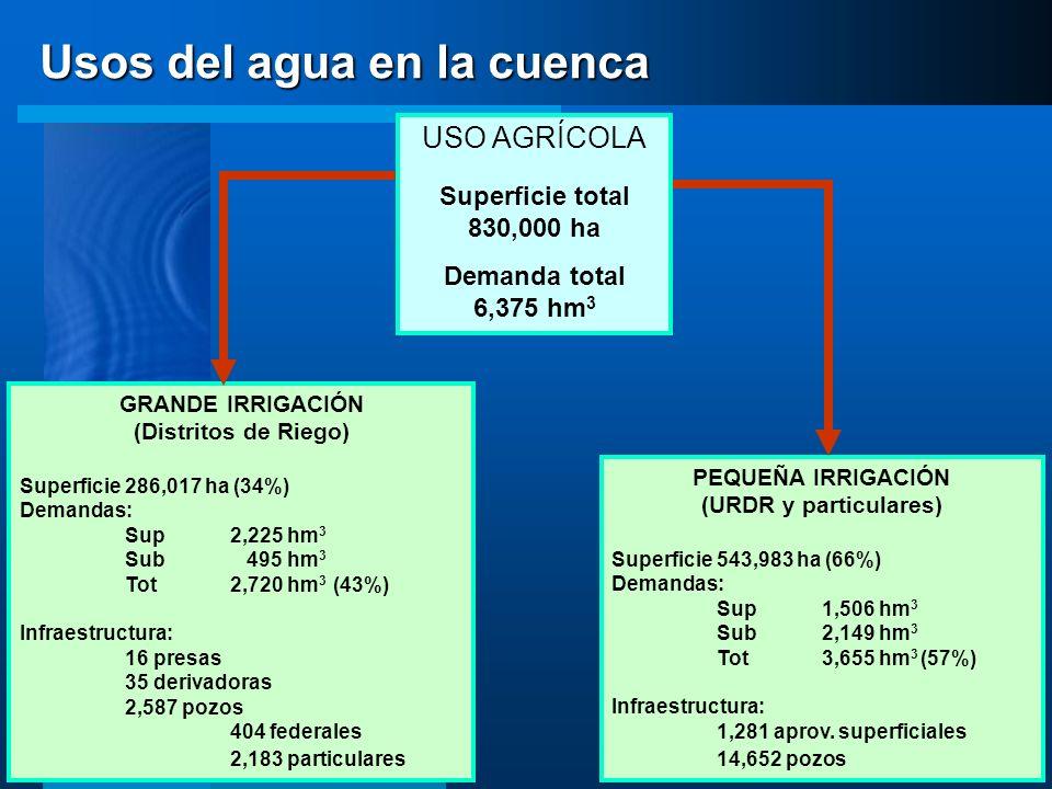 GRANDE IRRIGACIÓN (Distritos de Riego) Superficie286,017 ha (34%) Demandas: Sup2,225 hm 3 Sub 495 hm 3 Tot2,720 hm 3 (43%) Infraestructura: 16 presas