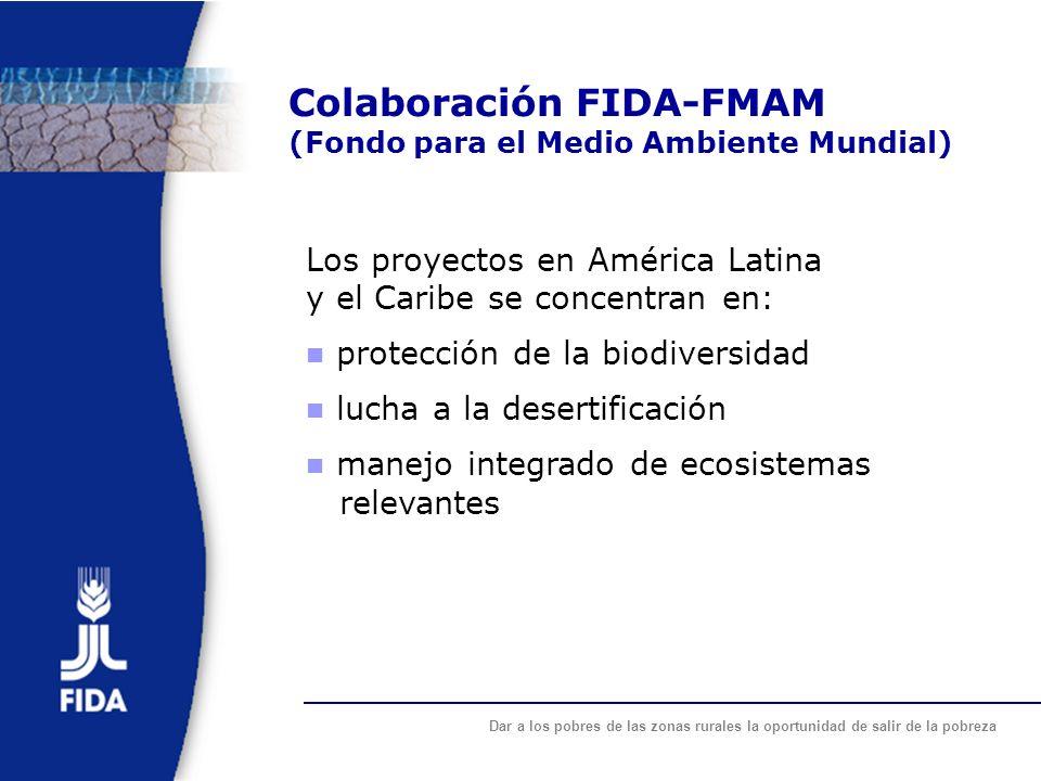 Dar a los pobres de las zonas rurales la oportunidad de salir de la pobreza Colaboración FIDA-FMAM (Fondo para el Medio Ambiente Mundial) Los proyecto