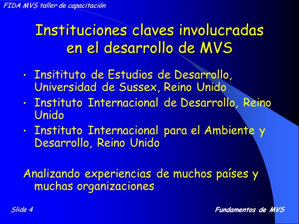 Instituciones claves involucradas en el desarrollo de MVS Insitituto de Estudios de Desarrollo, Universidad de Sussex, Reino Unido Instituto Internaci