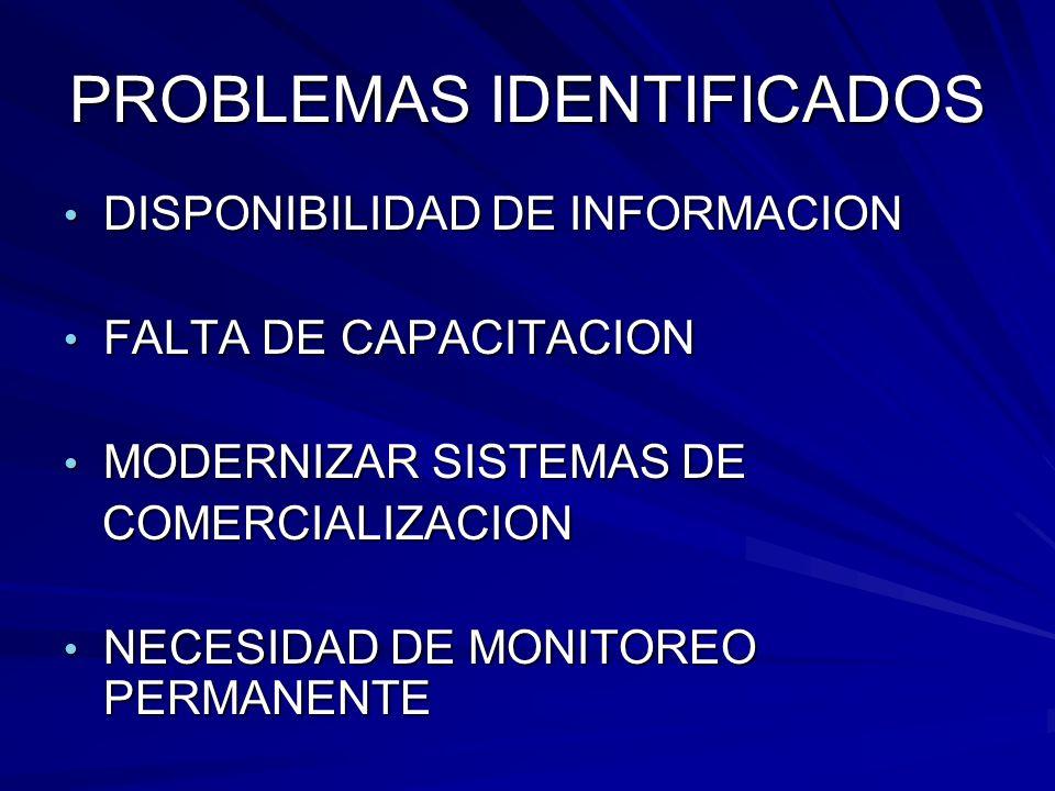 PROBLEMAS IDENTIFICADOS DISPONIBILIDAD DE INFORMACION DISPONIBILIDAD DE INFORMACION FALTA DE CAPACITACION FALTA DE CAPACITACION MODERNIZAR SISTEMAS DE