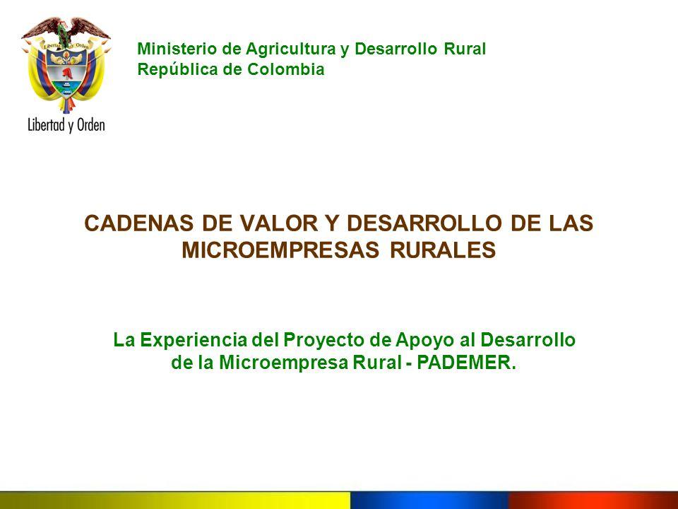 CADENAS DE VALOR Y DESARROLLO DE LAS MICROEMPRESAS RURALES La Experiencia del Proyecto de Apoyo al Desarrollo de la Microempresa Rural - PADEMER. Mini