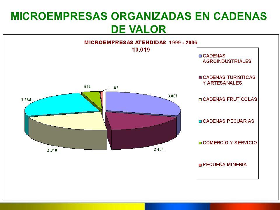MICROEMPRESAS ORGANIZADAS EN CADENAS DE VALOR