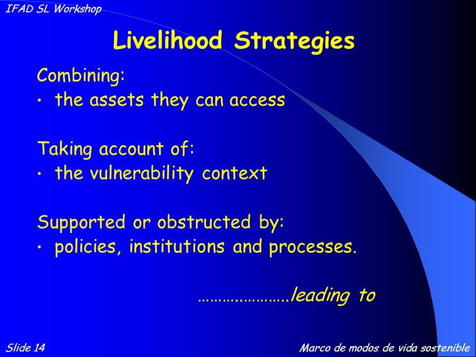 Livelihood Strategies Combining: the assets they can access Taking account of: the vulnerability context Supported or obstructed by: policies, institutions and processes.