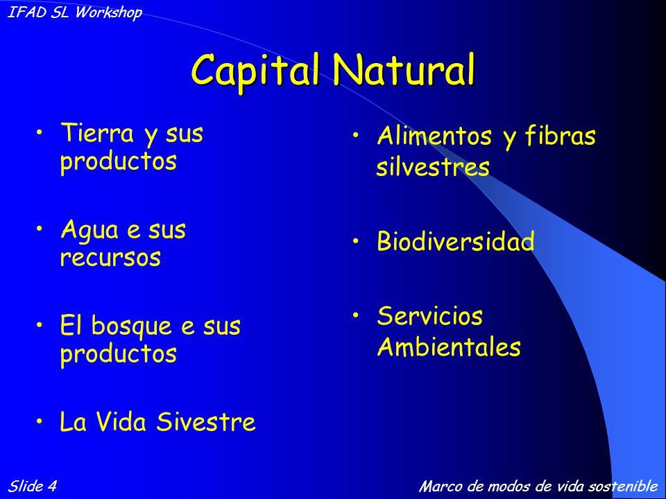 Capital Natural Tierra y sus productos Agua e sus recursos El bosque e sus productos La Vida Sivestre Alimentos y fibras silvestres Biodiversidad Servicios Ambientales Slide 4 IFAD SL Workshop Marco de modos de vida sostenible