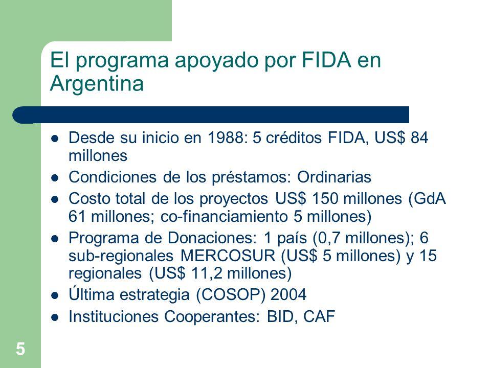 5 El programa apoyado por FIDA en Argentina Desde su inicio en 1988: 5 créditos FIDA, US$ 84 millones Condiciones de los préstamos: Ordinarias Costo total de los proyectos US$ 150 millones (GdA 61 millones; co-financiamiento 5 millones) Programa de Donaciones: 1 país (0,7 millones); 6 sub-regionales MERCOSUR (US$ 5 millones) y 15 regionales (US$ 11,2 millones) Última estrategia (COSOP) 2004 Instituciones Cooperantes: BID, CAF