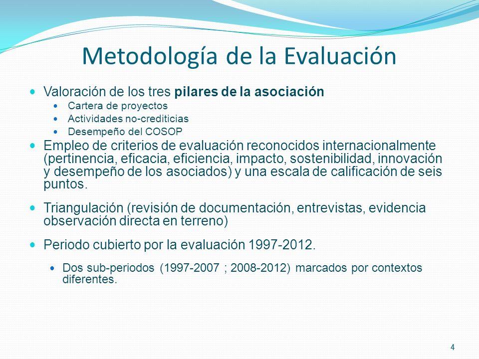 4 Metodología de la Evaluación Valoración de los tres pilares de la asociación Cartera de proyectos Actividades no-crediticias Desempeño del COSOP Empleo de criterios de evaluación reconocidos internacionalmente (pertinencia, eficacia, eficiencia, impacto, sostenibilidad, innovación y desempeño de los asociados) y una escala de calificación de seis puntos.