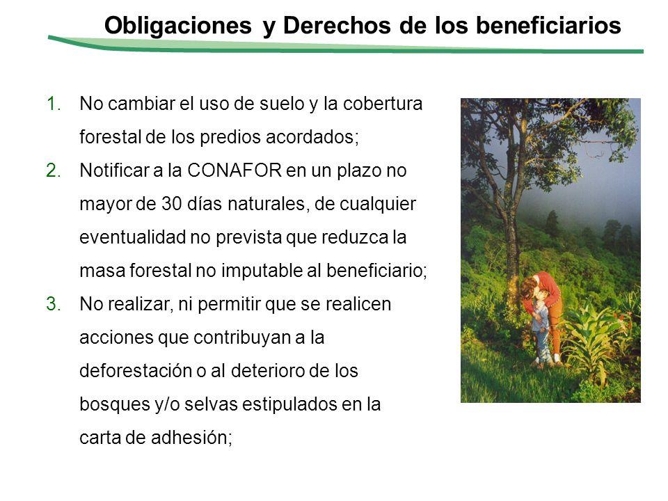 II-10 1.No cambiar el uso de suelo y la cobertura forestal de los predios acordados; 2.Notificar a la CONAFOR en un plazo no mayor de 30 días naturale