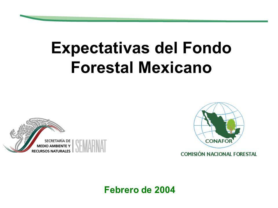 Expectativas del Fondo Forestal Mexicano Febrero de 2004