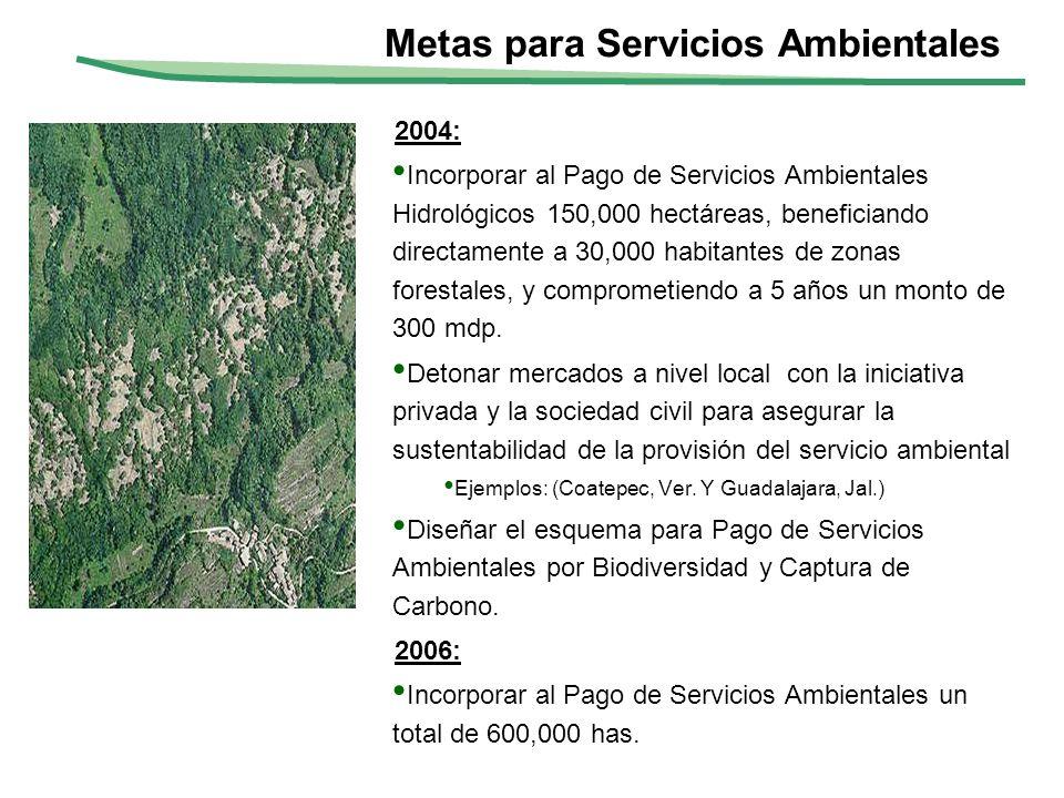 2004: Incorporar al Pago de Servicios Ambientales Hidrológicos 150,000 hectáreas, beneficiando directamente a 30,000 habitantes de zonas forestales, y